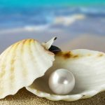 Freshwater Pearl and Sea Water Pearl